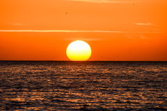 The  Sun Setting in the Sea Royalty Free Stock Photo