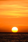 The  Sun Setting in the Sea Royalty Free Stock Image