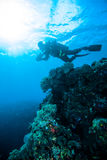 Sun shine scuba diving diver kapoposang sulawesi indonesia underwater Royalty Free Stock Images