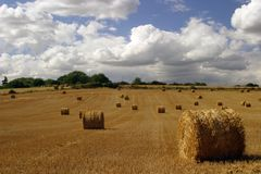 While The Sun Shines. Making hay while the sun shines. Nottinghamshire, England Stock Photography
