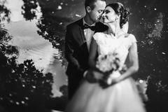 Sun shines newlyweds faces while thay stand behind a lake Stock Images