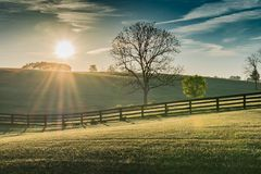 Sun Shines Over Rolling Kentucky Field. At Dawn stock photo