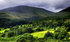The sun shines through on the Scottish countryside. Stock Images