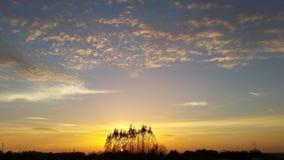 Sun shines Stock Image