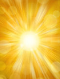 Sun Shining Background. A golden sun shining background Stock Photography