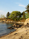 Sun Shining on a Beach on a Maine Island Royalty Free Stock Images