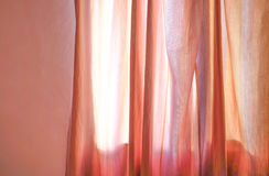 Sun shining through curtains. On beautiful summer day Royalty Free Stock Image