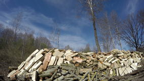Sun shining on cut firewood, time lapse 4K stock footage