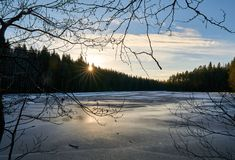 Sun shining through forest over lake stock photography