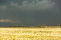 Sun shining on grassland under storym and rain Royalty Free Stock Photography