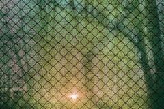 Sun shining through the green net and a fence. Sun shining through the green net and a  fence Royalty Free Stock Photos