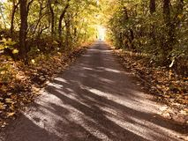 The old road in the autumn afternoon Stock Images