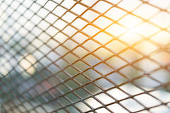 Sun shining through the steel cage diamond foreground bushes. Stock Image