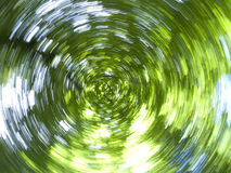 Sun shining though green tree branches as they are spinning Royalty Free Stock Photography