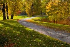 Sun shining through the trees on a path Stock Photos