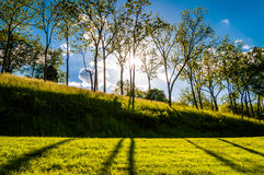Sun shining through trees and shadows on the grass at Antietam N Stock Image