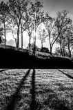 Sun shining through trees and shadows on the grass at Antietam N Stock Photo