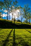 Sun shining through trees and shadows on the grass at Antietam National Battlefield Stock Images