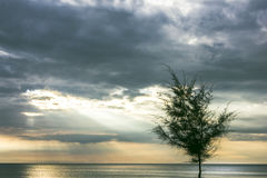 The sun shone through the clouds, the gap, a beautiful view. Royalty Free Stock Photo