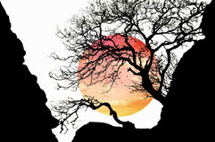 Sun and silhouette Royalty Free Stock Image