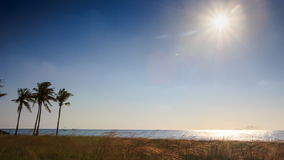 Sun in Sky over Sea Sunlight Reflection Palms Grass on Beach. Bright white sun in blue sky over azure sea with sunlight reflection wind shakes high palms grass stock video footage