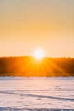 Sun sobre el cielo de Forest Horizon With Orange Sunset Colores naturales O Imagen de archivo