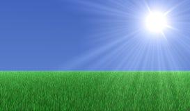 Sun sobre hierba Stock de ilustración