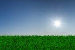 Sun sobre prado verde Foto de archivo