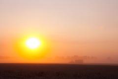 Sun sobre trigo de la cosecha mecanizada y el remolque de relleno fotos de archivo libres de regalías
