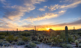 Sun. Sonoran Desert catching day's last rays, under beautifull sky royalty free stock photography