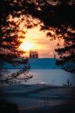 Sun sopra la pianta al tramonto di un giorno di inverno Fotografia Stock