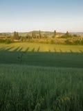 Sun stellt über toskanisches Ackerland mit Bauernhof im Abstand ein Lizenzfreie Stockfotografie