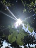 Sun stellte in Kreta ein lizenzfreies stockfoto