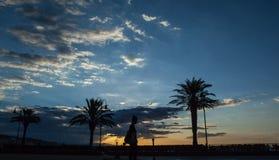 Sun stellte mit Palmenschattenbild ein Lizenzfreies Stockfoto