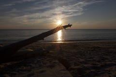 Sun-Stern auf Higbee-Strand Stockbild