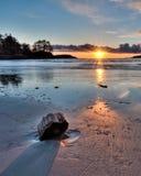 Sun-Sterngußteilschatten auf Strandholz Lizenzfreie Stockbilder