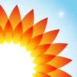 Sun strålar Royaltyfri Fotografi