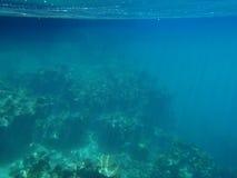 Sun-Strahlen im seichten Wasser Lizenzfreie Stockfotos