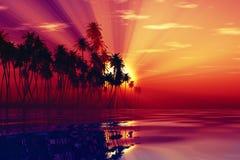 Sun-Strahlen innerhalb der Kokosnusspalmen Stockfotos