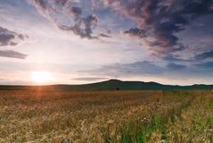 Sun-Strahlen und -wolken über einem Erntefeld Stockbilder