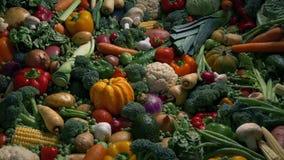 Sun sube en las verduras - concepto de la nutrición metrajes