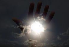 Sun sulla siluetta della palma Immagini Stock