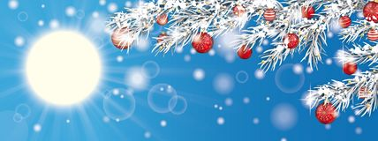 Blue Sky Frozen Twigs Sun Glitter Deco Red Baubles Header. Sun with sunbeam, christmas deco and frozen fir twigs on the blue sky Royalty Free Stock Photo