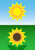 Sun and Sunflower Royalty Free Stock Images