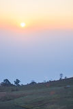 Sun Sunrise Stock Photos