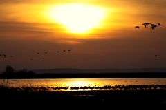 Sun, Sunset, Landscape, Water Stock Photos