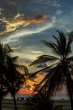 Sun at sunset through palm trees royalty free stock photography
