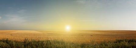 Sun sur des plaines image stock