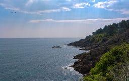 Sun sur la côte de la Bretagne images libres de droits