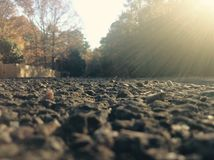 Sun sur la route chaude Photos libres de droits